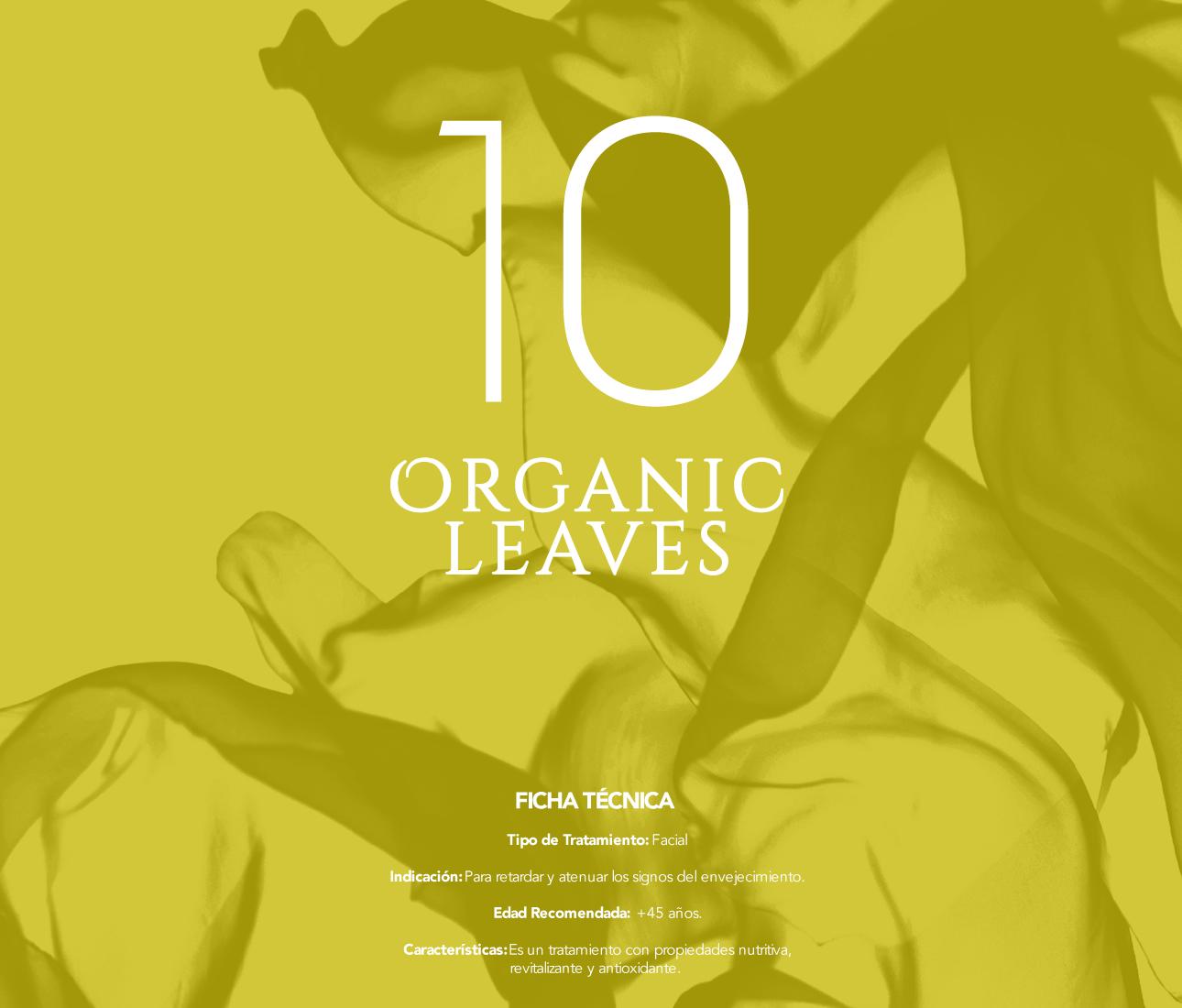 paso_a_paso_organic